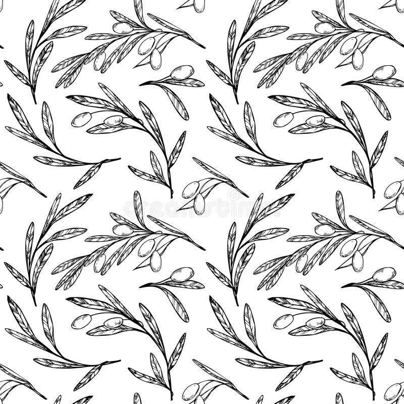 Modello senza cuciture disegnato a mano - di olivo Priorità bassa dell'annata illustrazione vettoriale