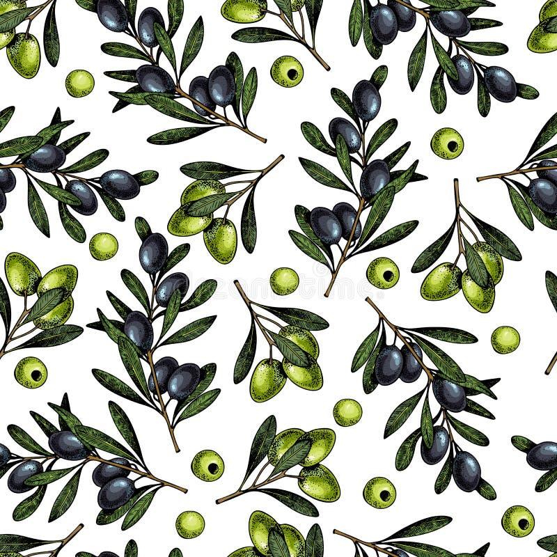 Modello senza cuciture disegnato a mano di vettore dei rami di ulivo Prodotti cosmetici naturali Oli di cura di capelli Verdure d illustrazione di stock