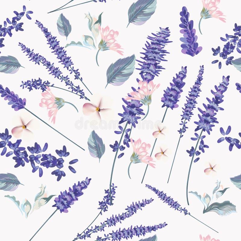 Modello senza cuciture floreale con i fiori della lavanda della molla per il desi illustrazione vettoriale