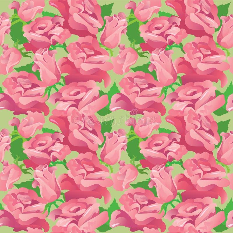 Modello senza cuciture floreale con le rose rosa di fioritura illustrazione vettoriale