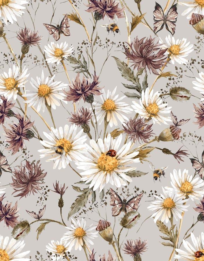 Download Modello Senza Cuciture Floreale D'annata Dell'acquerello Di Estate Illustrazione di Stock - Illustrazione di annata, bombo: 56890643