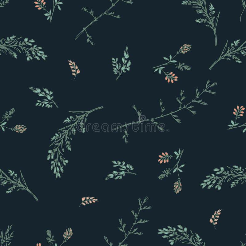 Modello senza cuciture floreale dell'estratto su fondo scuro Piccoli wildflowers e spighette di rosa del trifoglio illustrazione vettoriale