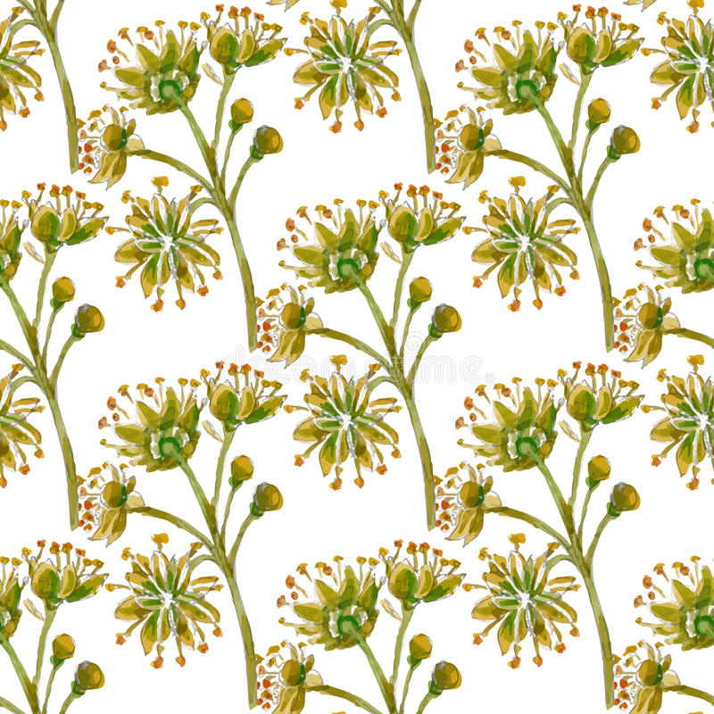 Download Modello Senza Cuciture Floreale Di Vettore Illustrazione Vettoriale - Illustrazione di verde, giardino: 55358289