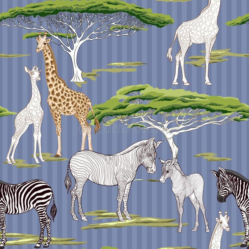 Modello senza cuciture, fondo con la zebra adulta e giraffa e zebra e cuccioli della giraffa Illustrazione di vettore illustrazione di stock