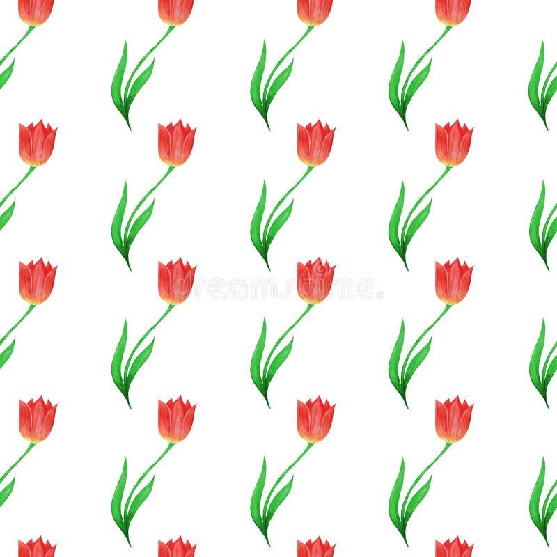 Modello senza cuciture semplice dei tulipani isolati su un fondo bianco illustrazione di stock