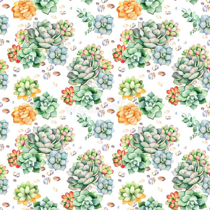 Modello senza cuciture variopinto con le piante dei succulenti, le pietre del ciottolo, i rami e più illustrazione di stock