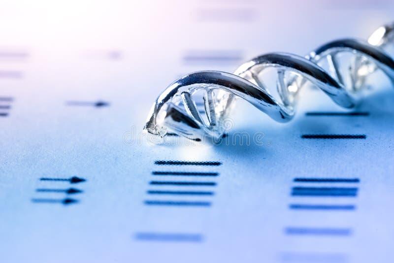 Modello Structure, concetto del DNA della molecola di scienza di lavoro di squadra di affari immagine stock