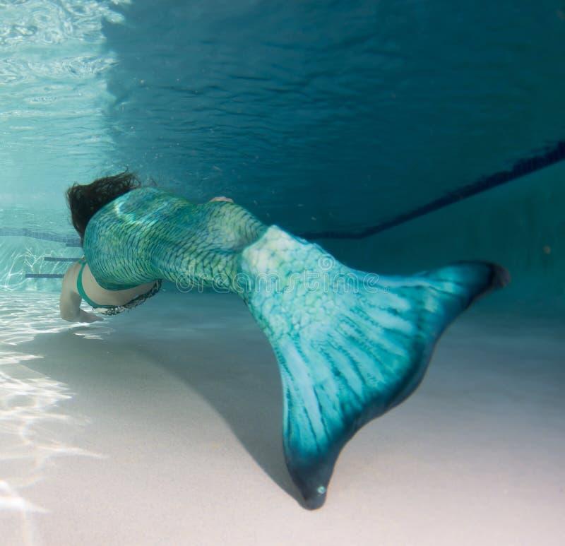 Modello subacqueo in uno stagno che indossa una coda delle sirene fotografia stock libera da diritti