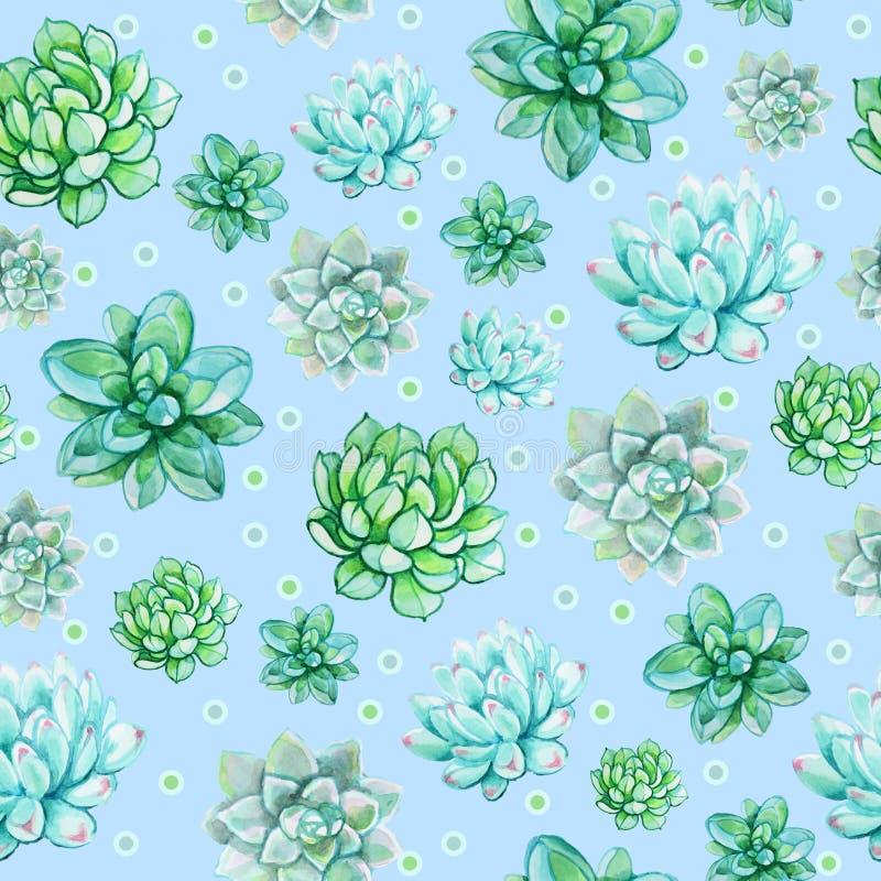 Modello succulente senza cuciture su un fondo blu illustrazione vettoriale