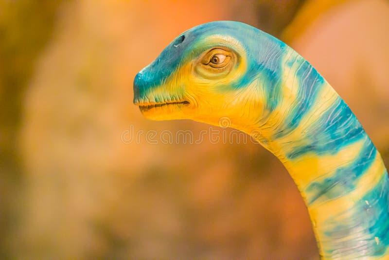 Modello sveglio dei sirindhornae del Phuwiangosaurus al mus del pubblico di Bangkok immagine stock libera da diritti