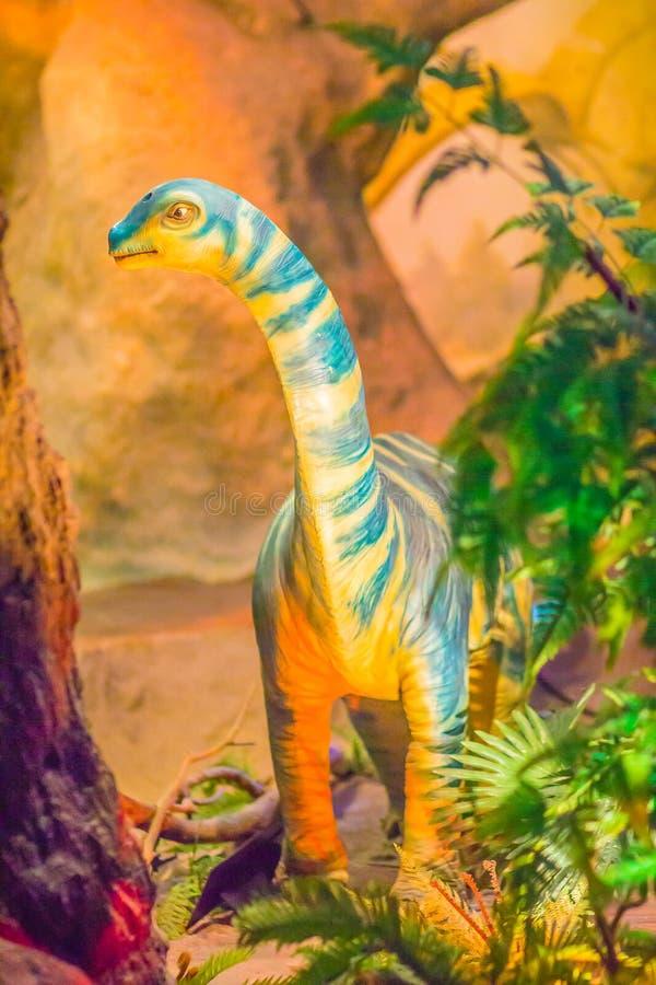 Modello sveglio dei sirindhornae del Phuwiangosaurus al mus del pubblico di Bangkok fotografia stock