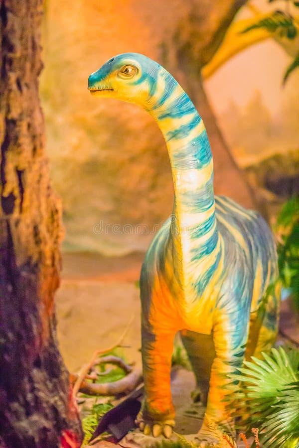 Modello sveglio dei sirindhornae del Phuwiangosaurus al mus del pubblico di Bangkok immagine stock