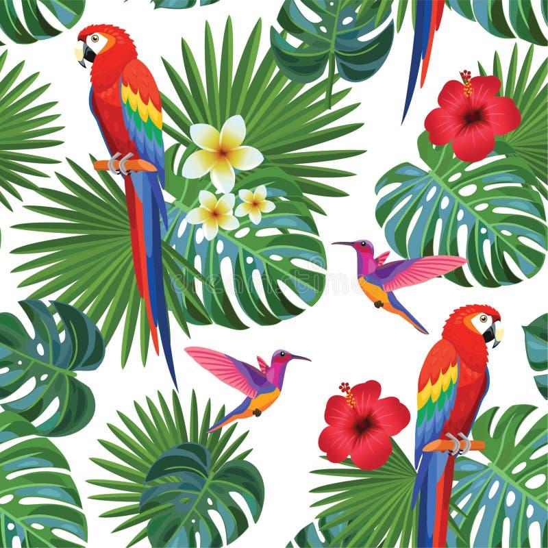 Modello tropicale con i pappagalli ed i colibrì Struttura senza giunte di vettore illustrazione di stock