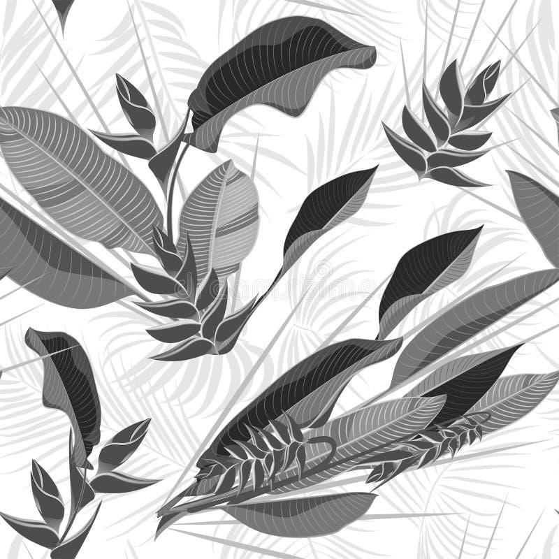 Modello tropicale disegnato a mano senza cuciture con le foglie di palma, foglia esotica della giungla su fondo bianco illustrazione di stock