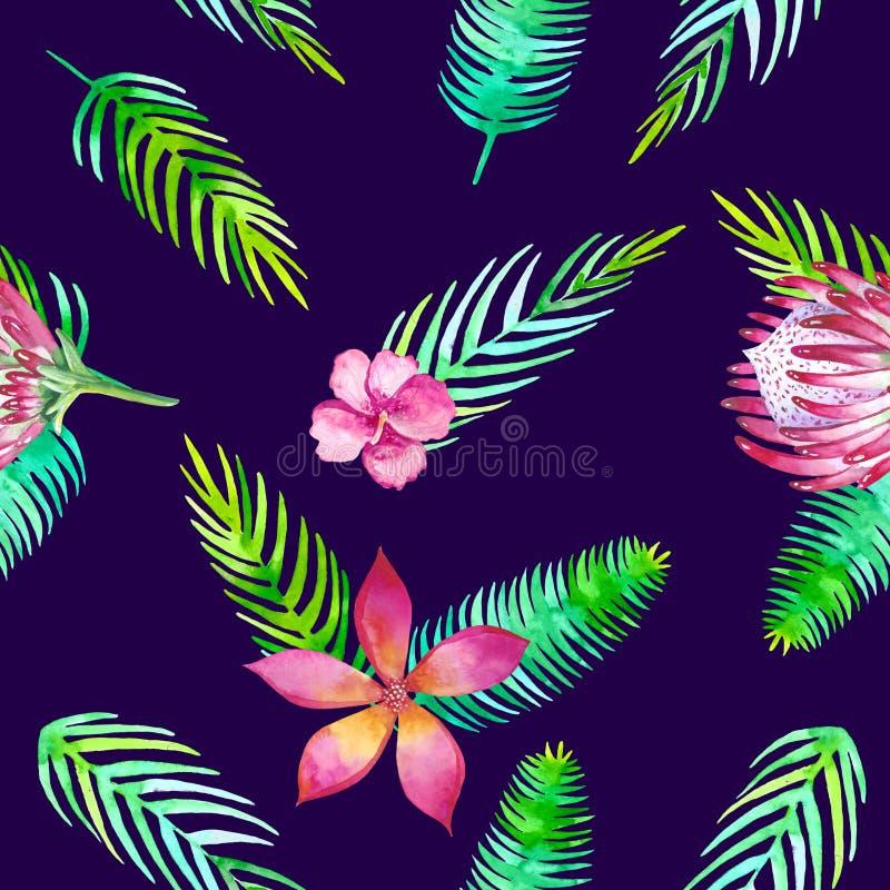 Modello tropicale senza cuciture di estate con gli elementi romantici floreali della giungla - protea e gibiscus Struttura senza  royalty illustrazione gratis