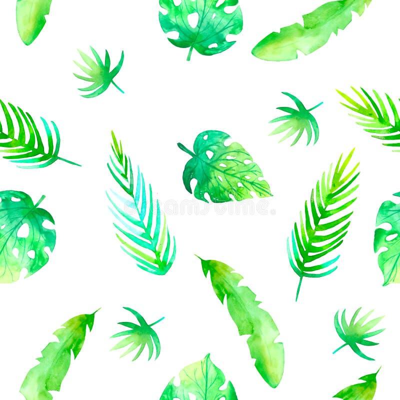 Modello tropicale senza cuciture di estate con gli elementi romantici floreali della giungla - protea e gibiscus Struttura senza  illustrazione di stock