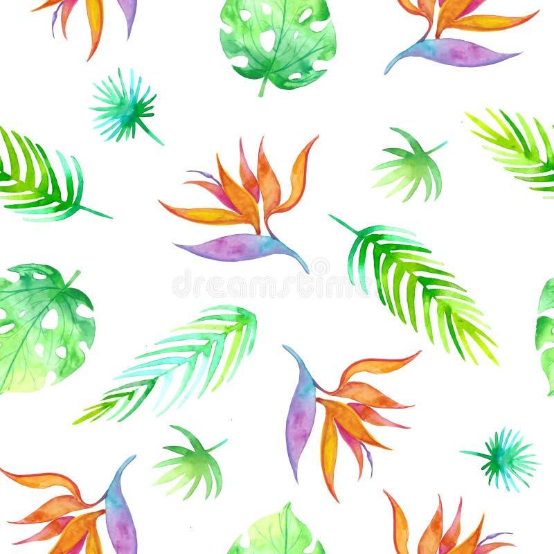 Modello tropicale senza cuciture di estate con gli elementi romantici floreali della giungla - strelizia e foglia di palma Strutt royalty illustrazione gratis