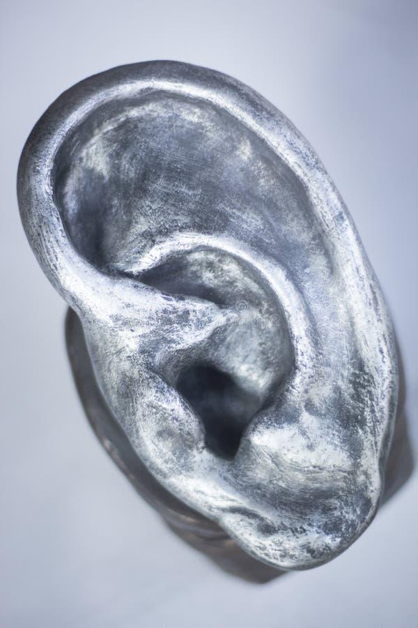 Modello umano di audiologia dell'orecchio fotografia stock libera da diritti