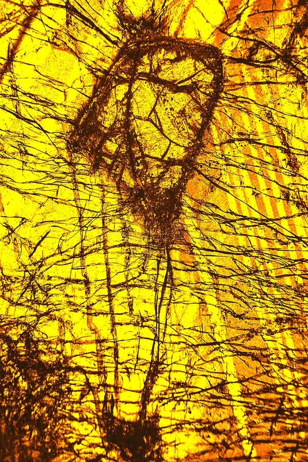 Modello variopinto e astratto di minerale in un micrografo di polarizzazione fotografia stock libera da diritti
