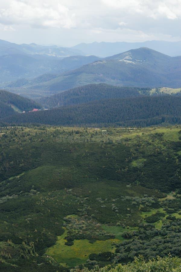 Modello verde della natura in montagne fotografia stock