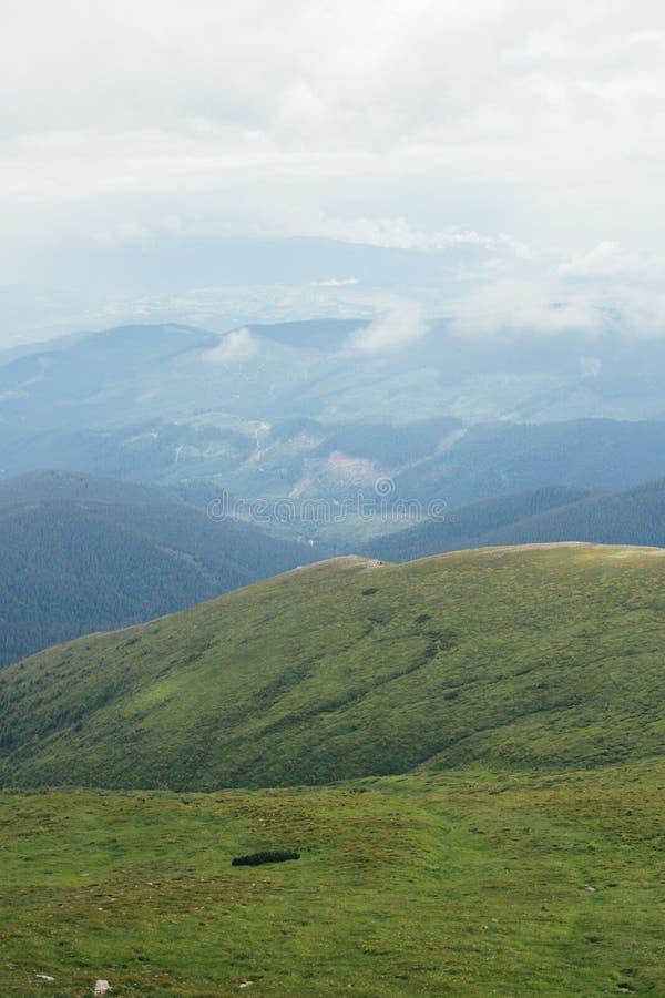 Modello verde della natura in montagne immagine stock libera da diritti