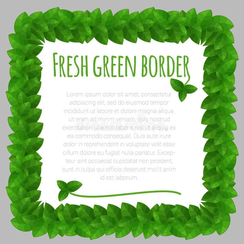 Modello verde della struttura delle foglie fresche illustrazione vettoriale
