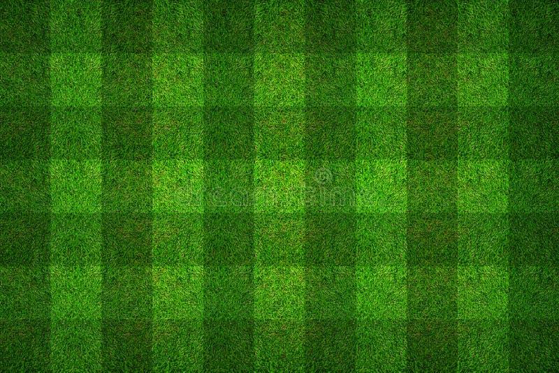 Modelltextur för grönt gräs för bakgrund för fotbollfält royaltyfria bilder