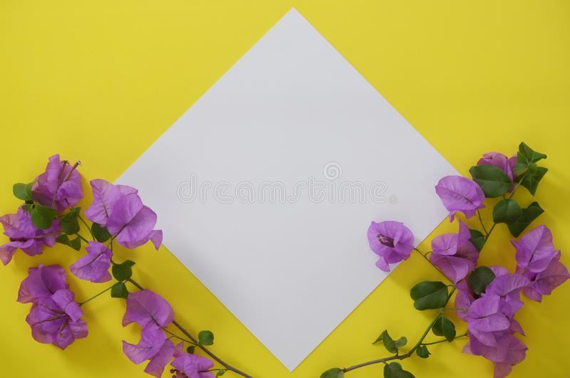 Modellvitbok med utrymme för text eller bild på gul bakgrund och blommor arkivfoto