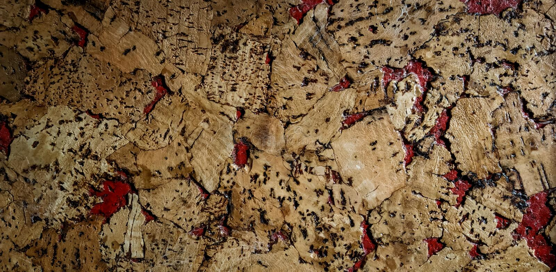 modelo abstracto del color por la pintura de aceite y la textura de madera natural fotografía de archivo