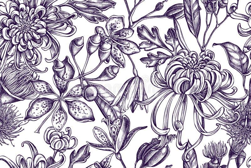 Modelo artístico con el crisantemo japonés, lirio de la zarzamora, flor del eucalipto ilustración del vector