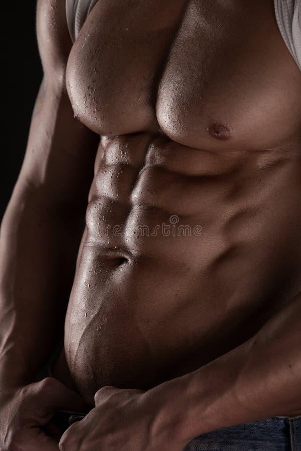 Modelo atlético forte Torso da aptidão do homem que mostra seis Abs do bloco. fotografia de stock