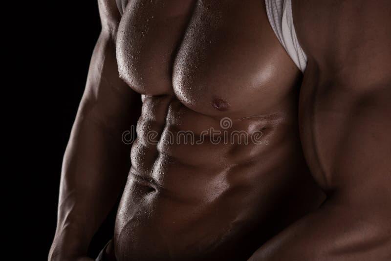 Modelo atlético forte Torso da aptidão do homem que mostra seis Abs do bloco. foto de stock royalty free
