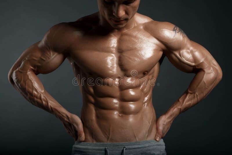 Modelo atlético forte Torso da aptidão do homem que mostra seis Abs do bloco foto de stock