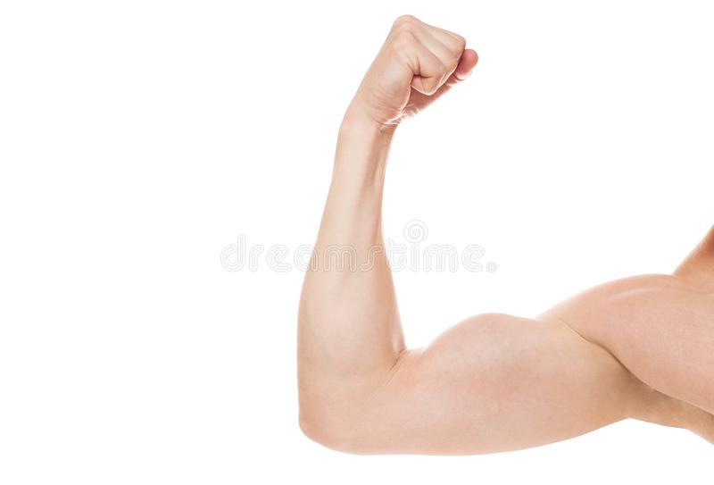 Modelo atlético fuerte de la aptitud del hombre, tríceps sobre el fondo blanco Copie el espacio foto de archivo libre de regalías