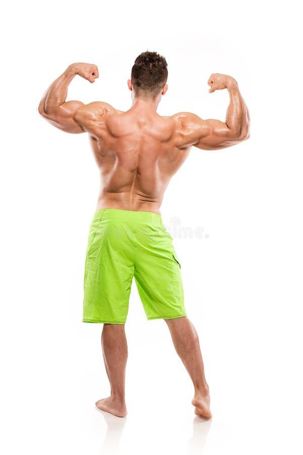 Modelo atlético fuerte Torso de la aptitud del hombre que muestra los músculos traseros grandes fotos de archivo libres de regalías