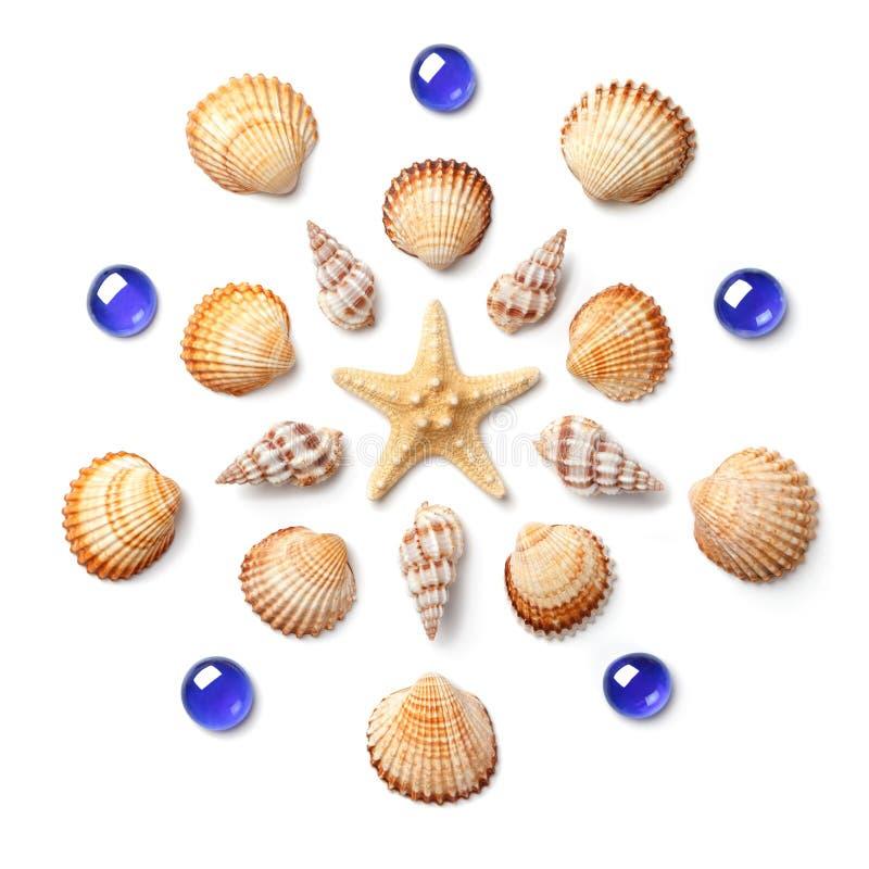 Modelo bajo la forma de círculo hecho de cáscaras, de estrellas de mar y de azul fotos de archivo libres de regalías