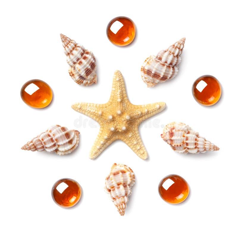 Modelo bajo la forma de círculo hecho de cáscaras, de estrellas de mar y de ora fotos de archivo libres de regalías