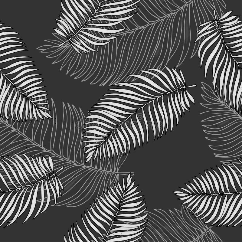 Modelo blanco y negro con las hojas de palma tropicales Ejemplo del vector en estilo del bosquejo foto de archivo