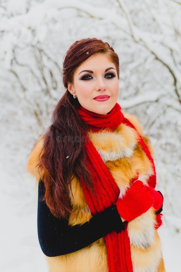 Modelo bonito con el pelo rojo que presenta en bosque del invierno fotografía de archivo
