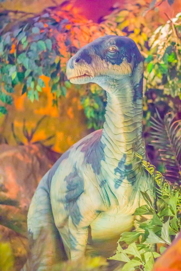 Modelo bonito do dinossauro de Iguanodon no museu público Iguanodon imagem de stock royalty free