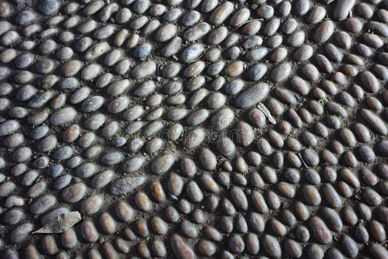 Modelo cobbled del piso imagen de archivo imagen de for Nivelar piso de tierra