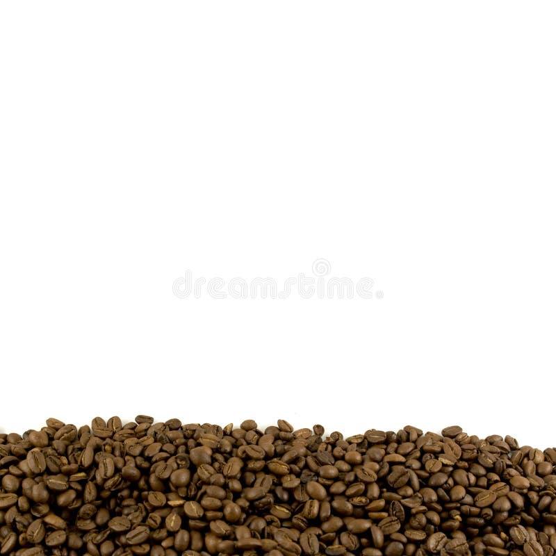 Modelo con el pie de los granos de café fotografía de archivo libre de regalías
