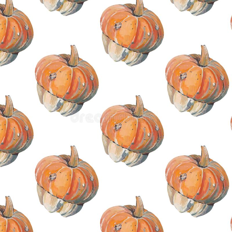 Modelo con las calabazas decorativas en el fondo blanco ilustración del vector