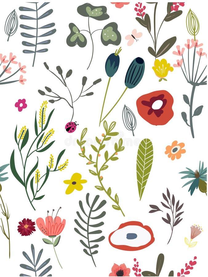 Modelo con las flores del garabato libre illustration