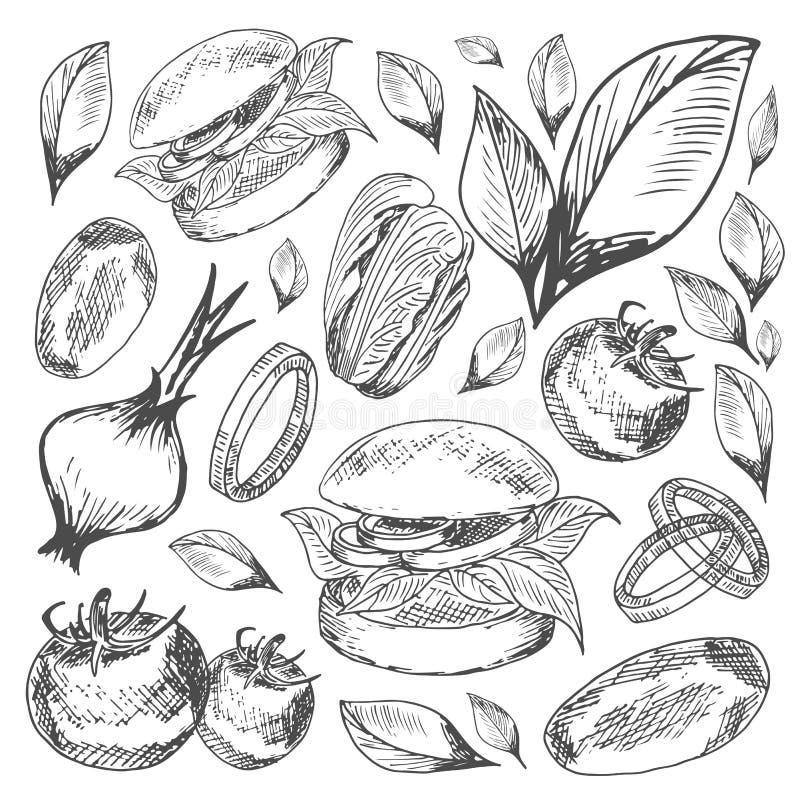 Modelo con las verduras y la hamburguesa del veggie ilustración del vector