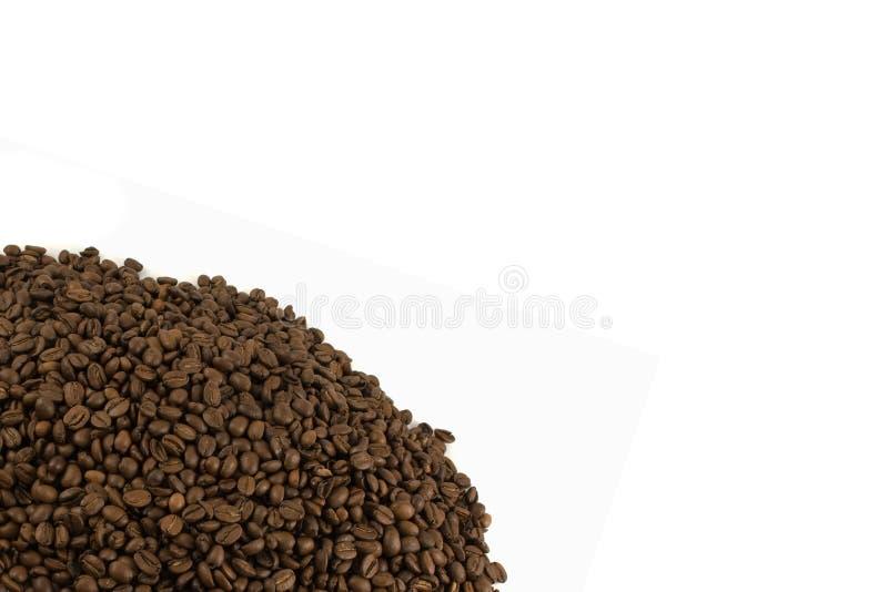 Modelo con los granos de café aislados fotos de archivo libres de regalías
