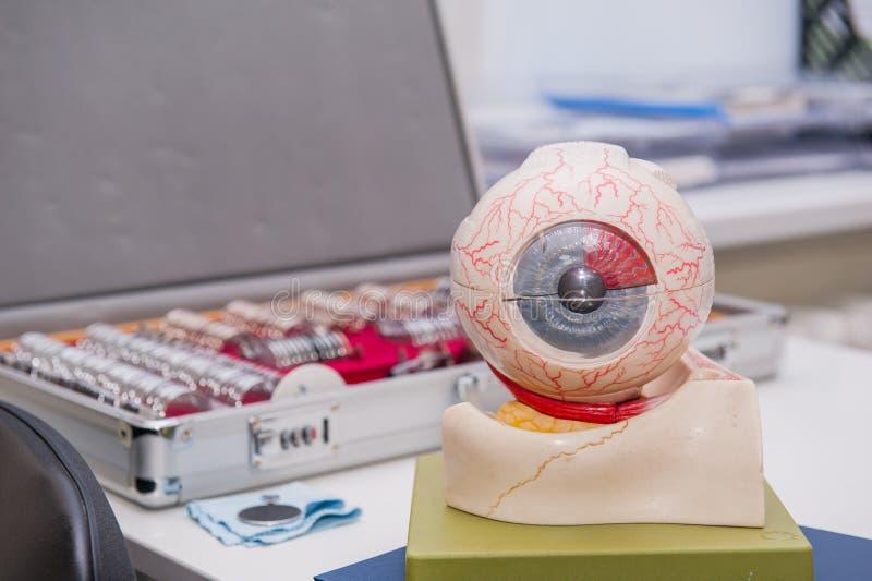 Modelo da anatomia do olho humano no fundo do grupo de lente corretiva Fundo abstrato ao conceito da oftalmologia Foco seletivo imagem de stock