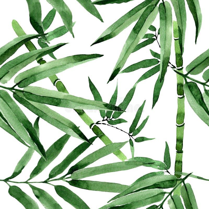 Modelo de bambú del árbol de las hojas tropicales en un estilo de la acuarela ilustración del vector