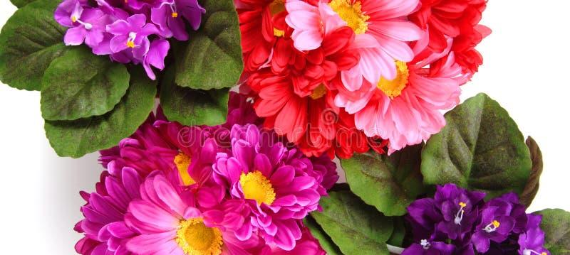 Modelo de flor foto de archivo libre de regalías