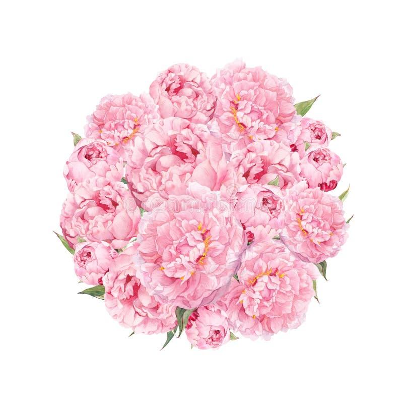 Modelo de flores con las peonías Ramo redondo de flores rosadas Acuarela floral ilustración del vector